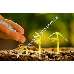 Как подобрать удобрение