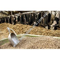 Технологии заготовки корма