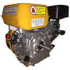 Двигун Forte 200G
