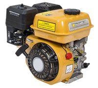Двигатель Forte F210G