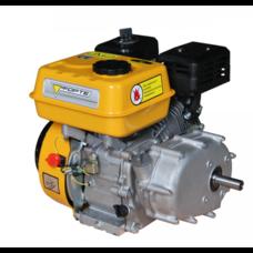Двигатель FORTE F210GRO(Редуктор автоматического сцепления )