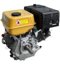 Двигун Forte F390G