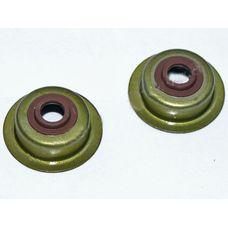 Сальник клапанов (2 шт) (168F/170F)